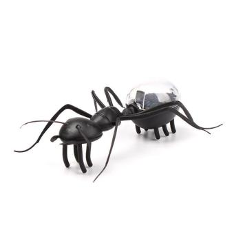 BUYINCOINS Cute Solar Powered Mini Ant Educational Toy Solar Toys For Kids