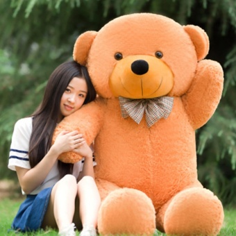 Chengyu Brown Stuffed Toys Animal Cute Teddy Bear Plush Soft Toy Birthday Present 80CM - intl