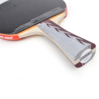 DHS Table Tennis Racket A4002, Ping Pong Paddle Shakehand - intl