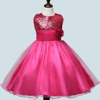 Fashion Gilrs Sleeveless Princess Party Birthday Wedding SequinFlower Lace Dress(Grey) - 4