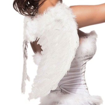 Feathers Angel's Wing (White) (Intl)