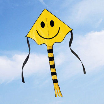 Harga 60 * 80cm Smiley Kite Smiling Face Kite for Kids with Handle Line Outdoor Sports Yellow - Intl