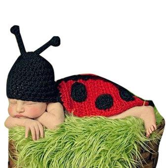 Newborn Baby Knit Ladybird Costume Photography Clothing