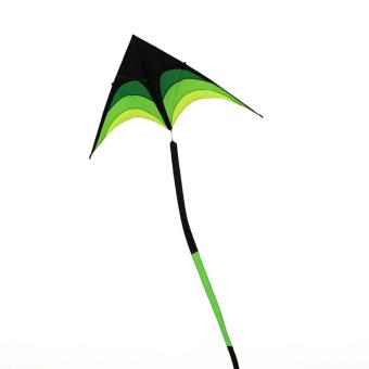 Sport Stunt Kite 2m/6.56ft Wind Span Prism Delta Outdoor Kites(30m) - intl Price Philippines