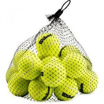 Wilson Pressureless Tennis Balls (18-Pack)
