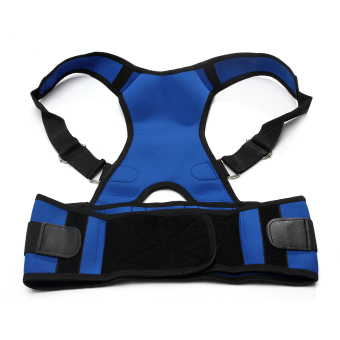 Adjustable Posture Back Lumbar Support Corrector Brace Shoulder Band Belt Blue L Comfortable Price Philippines