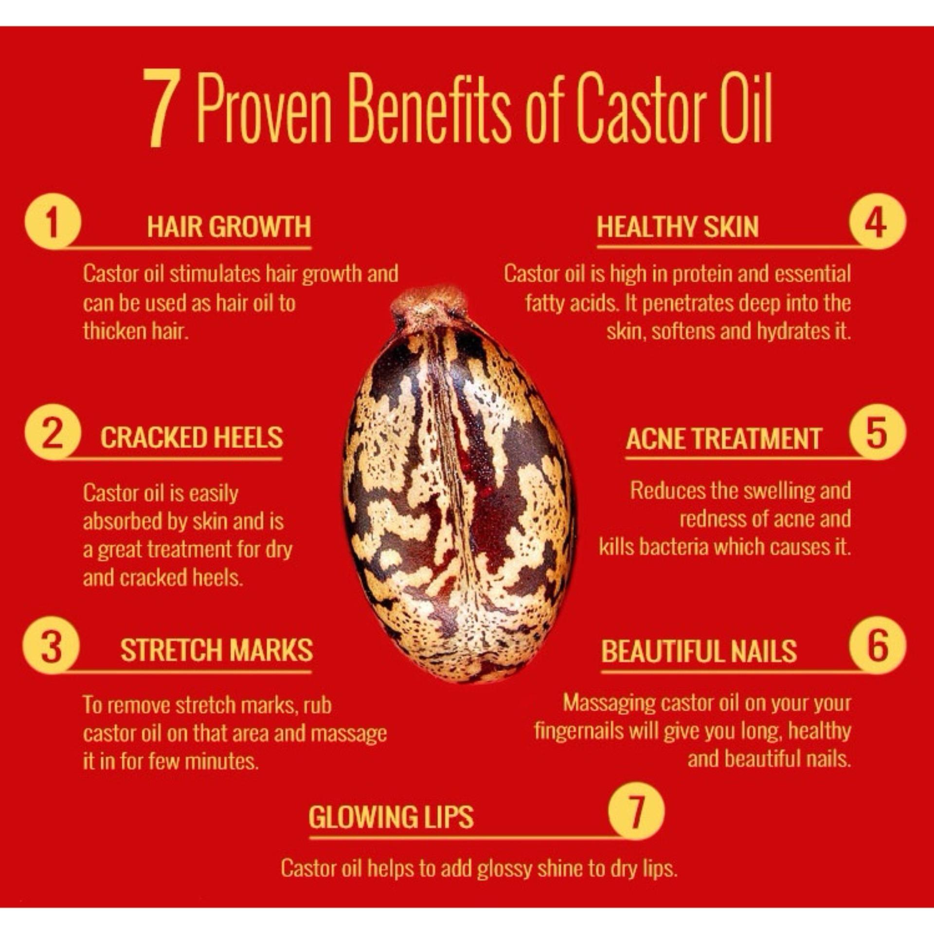 (Bundle of 3) Beauty Secret Castor Oil 100ml with FREE 10ml Mascara Tube