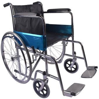 Care&Cure Heavy Duty Standard Chrome Adult Wheelchair (Silver) Price Philippines