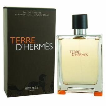Hermes Paris Terre D' Hermes Eau De Toilette 100ml
