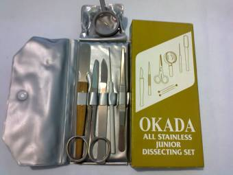 Dissecting Set Price Philippines