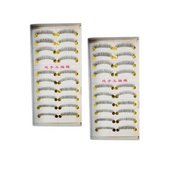 10 Pairs Taiwan Natural Eye Lashes Extension Long False Eyelashes (Set of 2) Price Philippines