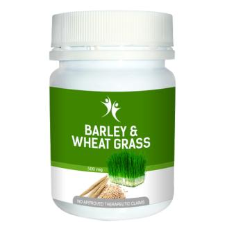 Barley & Wheat grass by Purplelife Price Philippines