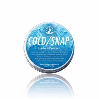 Coldsnap Heavy Hold Pomade by The Bearded Gent 50g Price Philippines