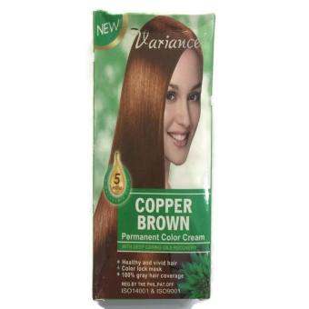 Variance Permanent Hair Color Cream With Deep Caring Oils Recovery(copper brown) 205g BUY 1 TAKE 1 - 2