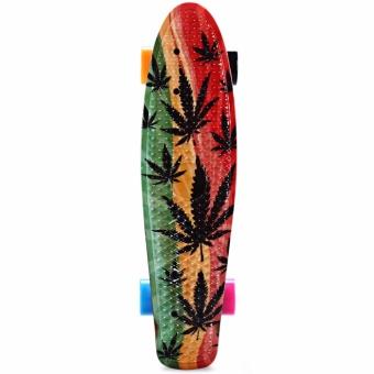 CL-24 22 inch Graffiti Maple Leaf Retro Skateboard Longboard Mini Cruiser - intl - 3