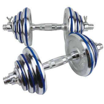 D&D Stainless Steel Dumbbell with 10kg (Silver/Blue)