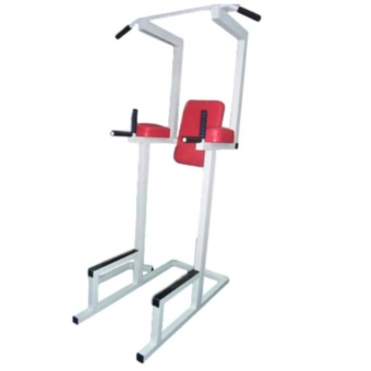 Dip Leg Raise and Pull Up Bar