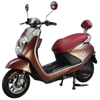 GOGO Evo Electric Bike/ Ebike (Bronze)