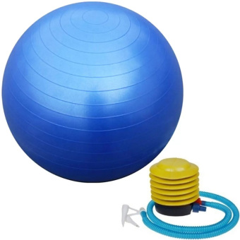 Gym Ball (Blue) Price Philippines