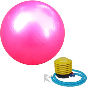Gym Ball (Pink) Price Philippines