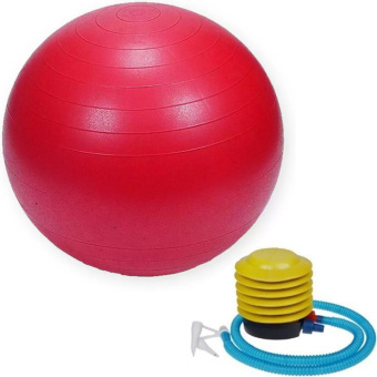 Gym Ball (Red) Price Philippines
