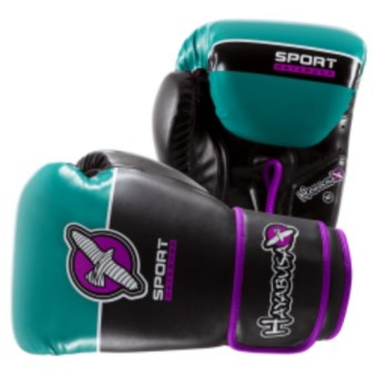 Harga Hayabusa Sport Boxing Gloves 10Oz (Teal/Purple)
