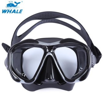 Sports Outdoors Diving Masks Whale Professional Scuba Hyperopia Myopia Diving Swimming Mask Goggle(Gray) - intl Price Philippines