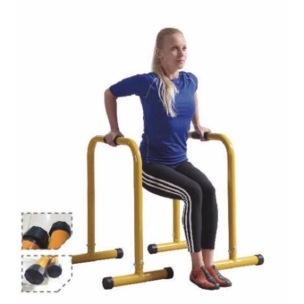 MD Buddy Parallel Bars Price Philippines