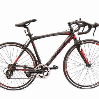 Paceline roadbike R720 Grey