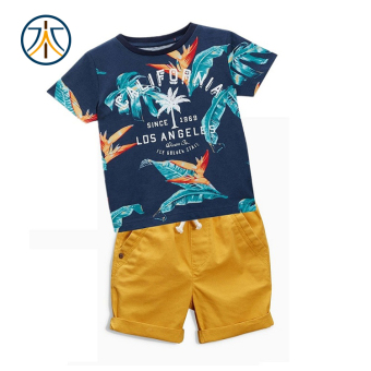 Baby summer boy's Cotton Short sleeved Short sleeve t-shirt suit