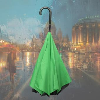 Double Layer Inverted Umbrella (Green) Price Philippines