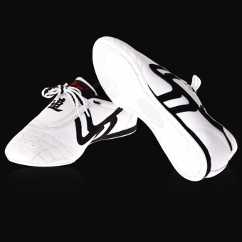 New Unisex Taekwondo Kung Fu Karate Tai Chi Training Shoes Footwear Sneakers - intl Price Philippines