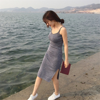 Korean-style female spring New style base skirt knit dress (Gray) (Gray)