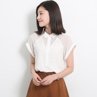 Loose Korean-style-and autumn perspective chiffon shirt (White)