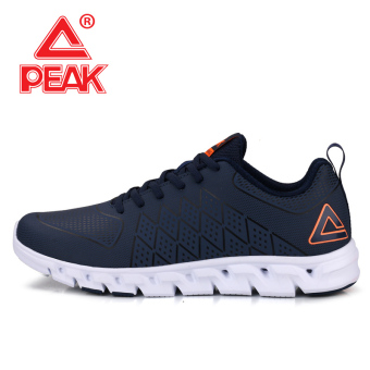 Peak autumn and winter New style breathable wear and I shoes men's shoes (Dian Lan)