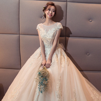 Princess New style bride wedding veil dress (Qi to models)