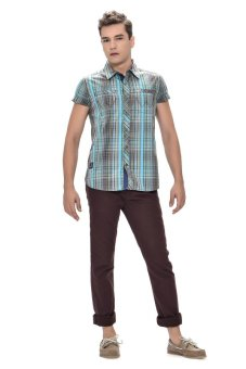 Wrangler Men's Checkered Polo Shirt (Green)
