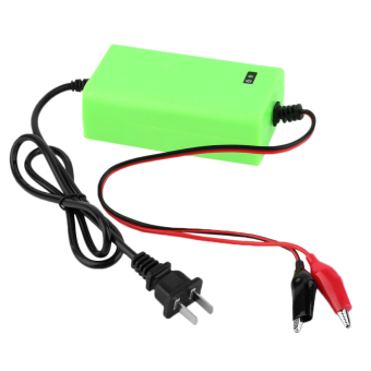 12V 2A Voltage Rechargeable Battery Power Charger 220V AC forMotorcycle Green (Intl) - 2