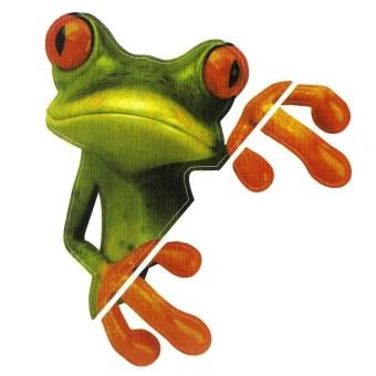 3D Peep Frog Funny Car Stickers Truck Window Decal Graphics Sticker - intl - 2