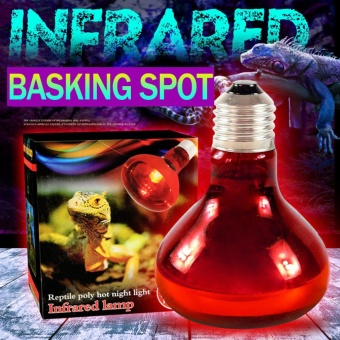 40/60/100W Infrared Basking Spot Lamp Single Max Heat Reptile Red Bulb Light - intl