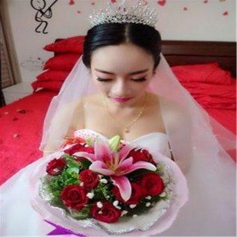 Beauty Pageant Queen Rhinestone Bridal Wedding Prom Tiara Comb Crown Fashion USA Silver - intl - 4