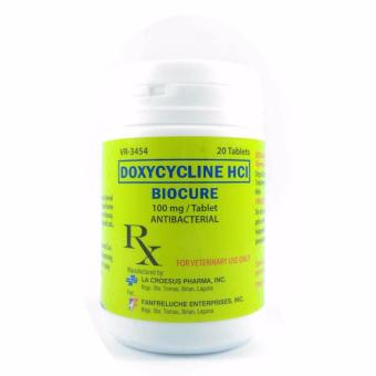 Biocure Doxycycline HCI Antibacterial 100mg Tablet Price Philippines