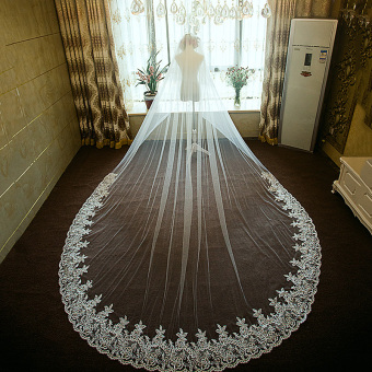 Bride wedding veil dress veil