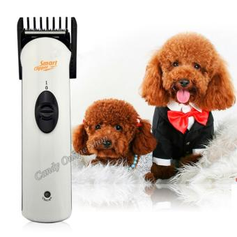 Candy Online Electric Pet Hair Clipper Complete Set HL-2011 (White)