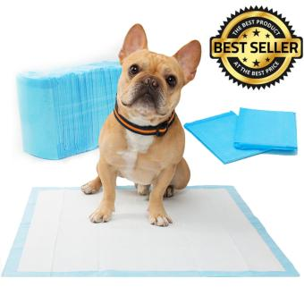 Dog Urine Pee Puppy Pet Training Pads 100pcs 33 x 45 cm