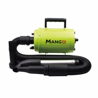 Aeolus Mango Super Dryer Price Philippines