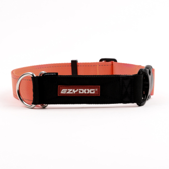 Ezydog Checkmate Collar Dog Leash (Blaze Orange) Price Philippines