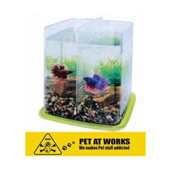Harga Classica Betta Battle Paradise Crystal Yellow (6.4 Liter) For Fighthing Fish, Tetra Fish, Nano Tank
