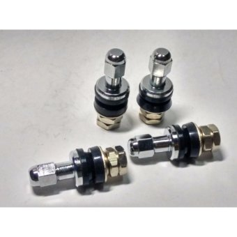 Fuji Inner Mounted Short Stainless Valve Set of 4 PCS Price Philippines