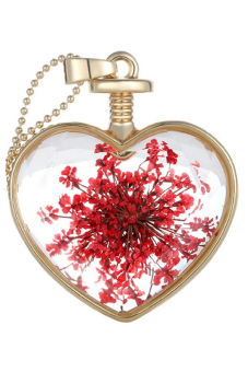 Living Memory Charms Nature Dried Flower Glass Locket Heart Pendant Necklace New[Red] (Intl)